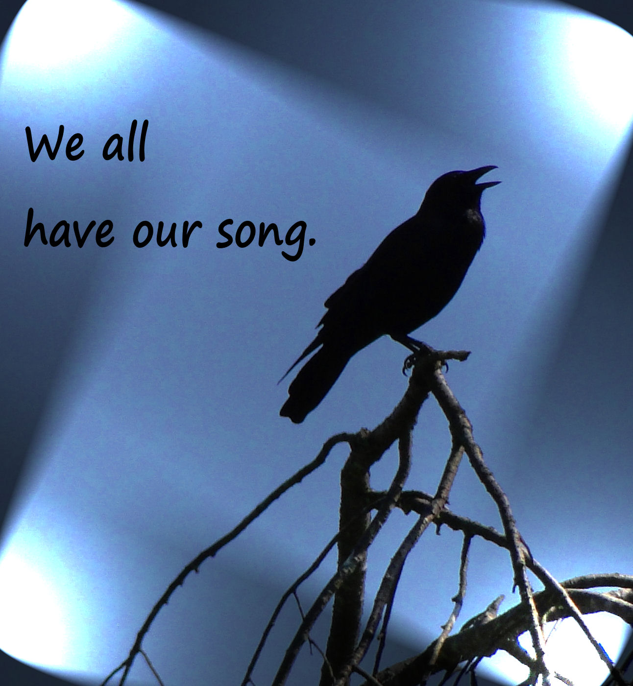 We All Have Our Song